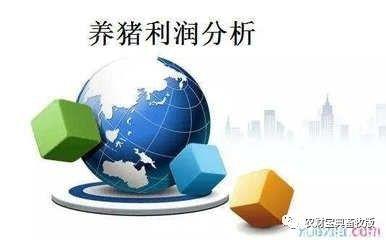 【国际猪业】好文章!影响中国猪业发展的六大关键因素1476.png